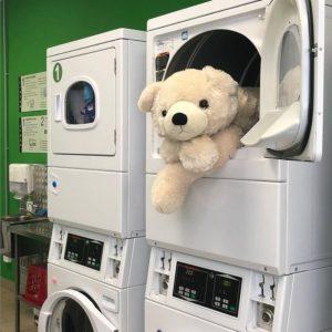 игрушка в машине показывает возможности стиральных машин справлятьс с любыми объемами работ и степенью загрязнения. а также возможность стирать в стиральной машине вещи любой конфигурации. предназначено для использования в промышленных объемах. для стирки негабаритных вещей. от лидера рынка прачечных самообслуживания СамПРАЧКА